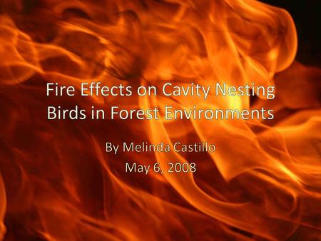 How are cavity-nesting bird (CNB) populations impacted by fire and the Healthy Forest Restoration Act of 2003? Which is more beneficial?