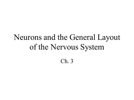 Neurons and the General Layout of the Nervous System Ch. 3.