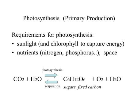 Photosynthesis (Primary Production) Requirements for photosynthesis: sunlight (and chlorophyll to capture energy) nutrients (nitrogen, phosphorus..), space.