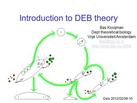 Introduction to DEB theory Bas Kooijman Dept theoretical biology Vrije Universiteit Amsterdam  Oslo 2012/02/09-10.