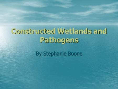 Constructed Wetlands and Pathogens By Stephanie Boone.