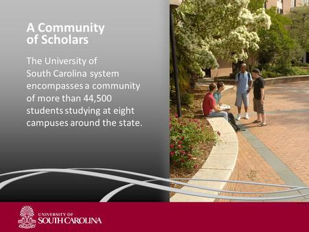 A Community of Scholars The University of South Carolina system encompasses a community of more than 44,500 students studying at eight campuses around.