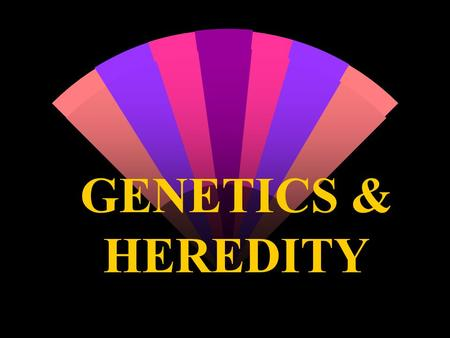 GENETICS & HEREDITY. w GENETICS - The study of the way animals & plants pass on to their offspring such as: w eye color, hair color, height, body build,