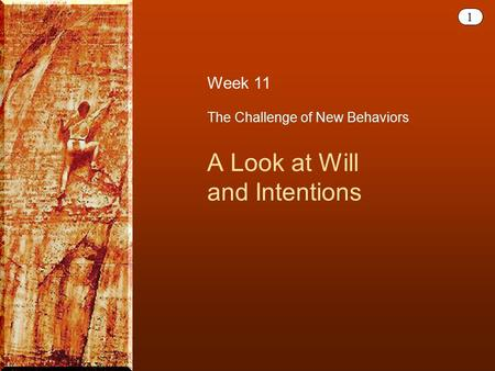 1 The Challenge of New Behaviors A Look at Will and Intentions Week 11.