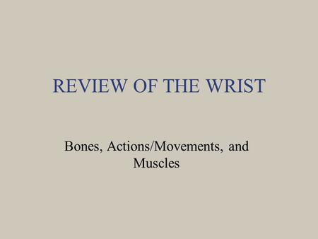 REVIEW OF THE WRIST Bones, Actions/Movements, and Muscles.