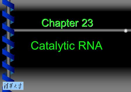 Chapter 23 Catalytic RNA. 23.1 Introduction 23.2 Group I introns undertake self-splicing by transesterification 23.3 Group I introns form a characteristic.