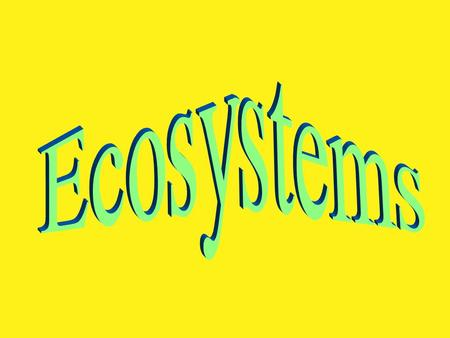 What is an ecosystem? An ecosystem is a dynamic interaction between plants, animals, microorganisms and their environment working together as a functional.