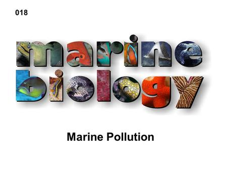 Marine Pollution 018. Petroleum hydrocarbons Plastics Pesticides Heavy metals Sewage Radioactive waste Thermal effluents Marine Pollutants.