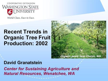 Recent Trends in Organic Tree Fruit Production: 2002 David Granatstein Center for Sustaining Agriculture and Natural Resources, Wenatchee, WA Organic pears.