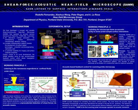 Rodolfo Fernandez, Xiaohua Wang, Peter Rogen, and A. La Rosa Near-field Microscopy Group Department of Physics, Portland State University, P.O. Box 751;