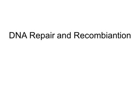 DNA Repair and Recombiantion. Methyl-directed mismatch repair (1) If any mismatch escapes the proof reading mechanisms it will cause distortion of the.