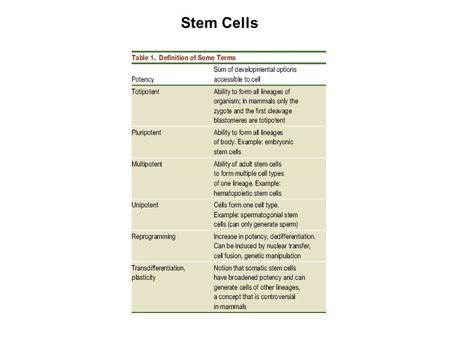 Stem Cells. Hochedlinger, K. & Jaenisch, R. N Engl J Med 2003; 349:275-286 Comparison of Normal Development, Reproductive Cloning & Therapeutic Cloning.