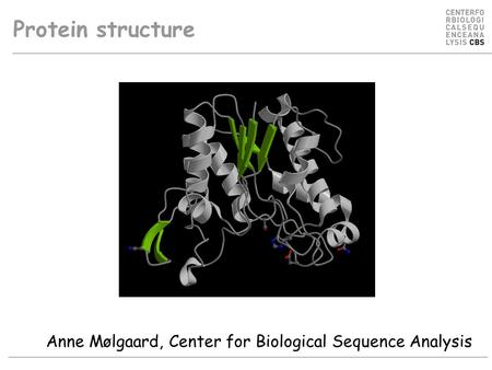 Protein structure Anne Mølgaard, Center for Biological Sequence Analysis.