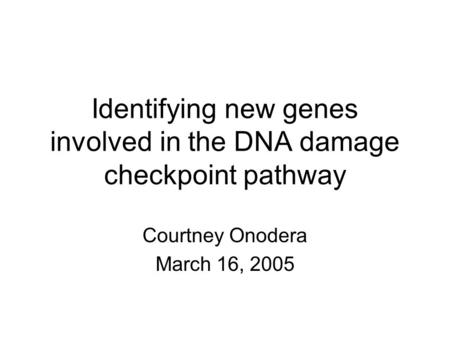 Identifying new genes involved in the DNA damage checkpoint pathway Courtney Onodera March 16, 2005.