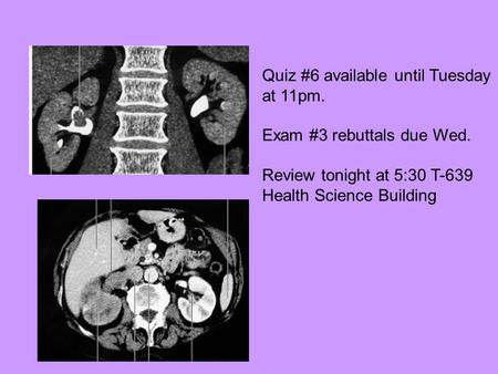Quiz #6 available until Tuesday at 11pm. Exam #3 rebuttals due Wed. Review tonight at 5:30 T-639 Health Science Building.