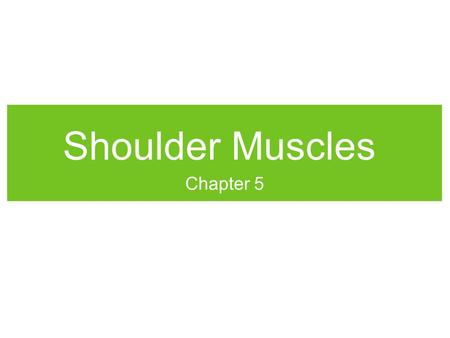 Shoulder Muscles Chapter 5.