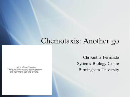 Chemotaxis: Another go Chrisantha Fernando Systems Biology Centre Birmingham University Chrisantha Fernando Systems Biology Centre Birmingham University.