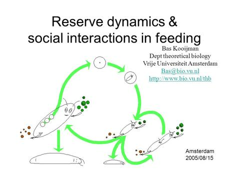 Reserve dynamics & social interactions in feeding Bas Kooijman Dept theoretical biology Vrije Universiteit Amsterdam