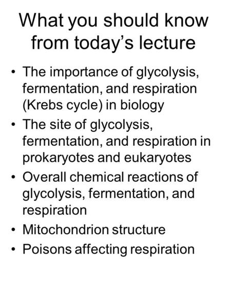 What you should know from today's lecture The importance of glycolysis, fermentation, and respiration (Krebs cycle) in biology The site of glycolysis,