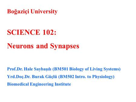 Boğaziçi University SCIENCE 102: Neurons and Synapses Prof.Dr. Hale Saybaşılı (BM501 Biology of Living Systems) Yrd.Doç.Dr. Burak Güçlü (BM502 Intro. to.