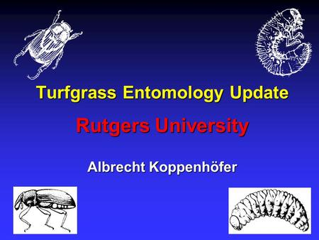 Turfgrass Entomology Update Rutgers University Albrecht Koppenhöfer.