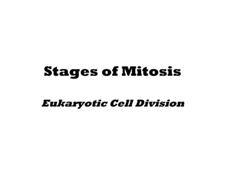 Stages of Mitosis Eukaryotic Cell Division. Cell Division Facts All living organisms start out from a single cell The average Human has about 10 trillion.