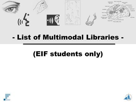 - List of Multimodal Libraries - (EIF students only)