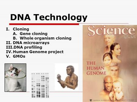 DNA Technology I.Cloning A.Gene cloning B.Whole organism cloning II.DNA microarrays III.DNA profiling IV.Human Genome project V.GMOs.