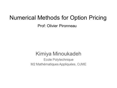 Numerical Methods for Option Pricing