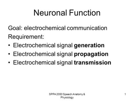 SPPA 2050 Speech Anatomy & Physiology 1 Neuronal Function Goal: electrochemical communication Requirement: Electrochemical signal generation Electrochemical.