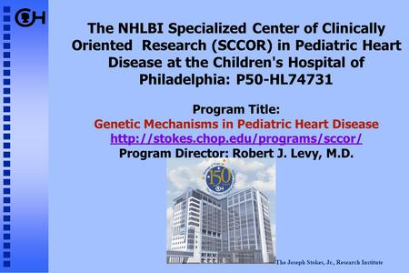 The Joseph Stokes, Jr., Research Institute The NHLBI Specialized Center of Clinically Oriented Research (SCCOR) in Pediatric Heart Disease at the Children's.