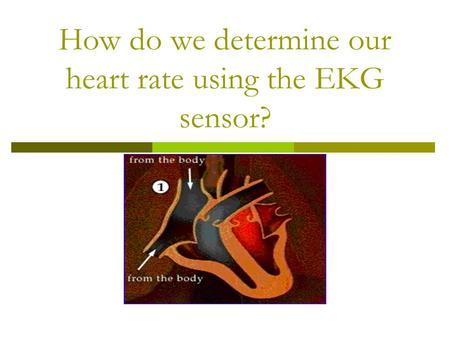 How do we determine our heart rate using the EKG sensor?