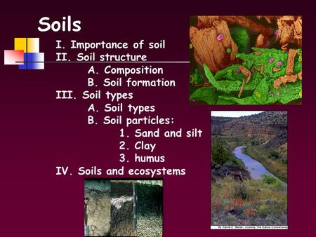 Soils I. Importance of soil II. Soil structure A. Composition B. Soil formation III. Soil types A. Soil types B. Soil particles: 1. Sand and silt 2. Clay.