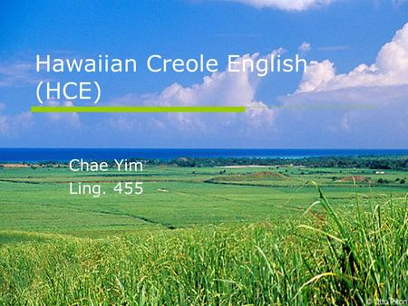 Hawaiian Creole English (HCE)