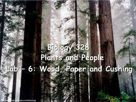 Plants and People Lab – 6: Wood, Paper and Cushing Biology 328.