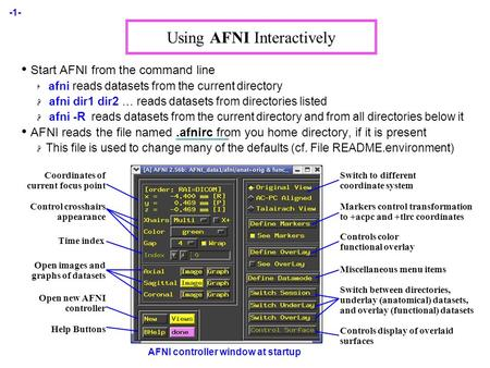 -1- Using AFNI Interactively Start AFNI from the command line  afni reads datasets from the current directory  afni dir1 dir2 … reads datasets from directories.
