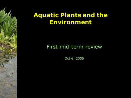 Aquatic Plants and the Environment First mid-term review Oct 6, 2005.