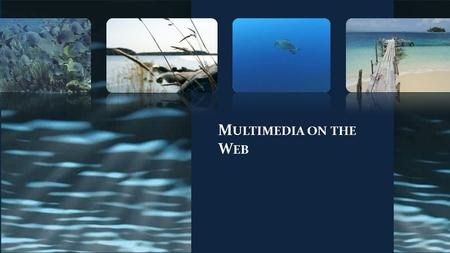 M ULTIMEDIA ON THE W EB. Multimedia Purpose of Multimedia Multimedia Issues Animation Digital Audio fundamentals Browser Plug-ins Java Applets.