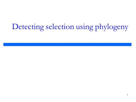 1 Detecting selection using phylogeny. 2 Evaluation of prediction methods  Comparing our results to experimentally verified sites Positive (hit)Negative.