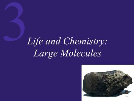 3 Life and Chemistry: Large Molecules. 3 Macromolecules: Giant Polymers There are four major types of biological macromolecules:  Proteins  Carbohydrates.