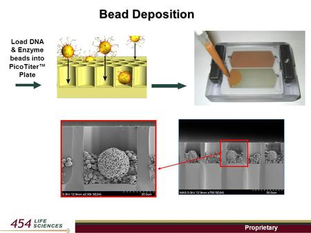 Proprietary Bead Deposition Load DNA & Enzyme beads into PicoTiter™ Plate.
