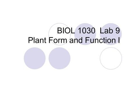 BIOL 1030 Lab 9 Plant Form and Function I