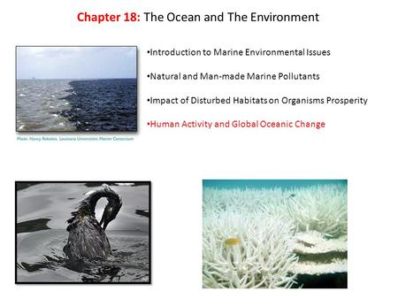 Introduction to Marine Environmental Issues Natural and Man-made Marine Pollutants Impact of Disturbed Habitats on Organisms Prosperity Human Activity.