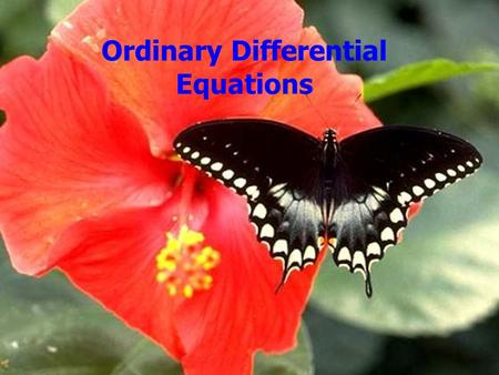 Ordinary Differential Equations. Outline Announcements: –Homework II: Solutions on web –Homework III: due Wed. by 5, by e-mail Homework II Differential.