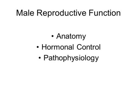 Male Reproductive Function Anatomy Hormonal Control Pathophysiology.