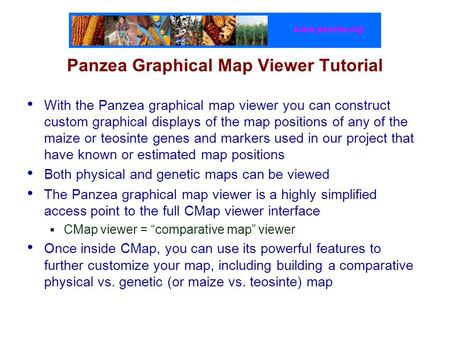 Www.panzea.org Panzea Graphical Map Viewer Tutorial With the Panzea graphical map viewer you can construct custom graphical displays of the map positions.