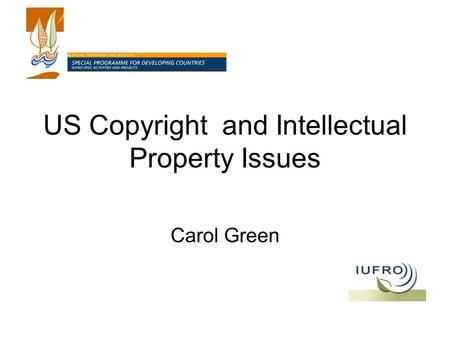 US Copyright and Intellectual Property Issues Carol Green.