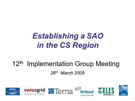 1 12 th Implementation Group Meeting 26 th March 2009 Establishing a SAO in the CS Region.