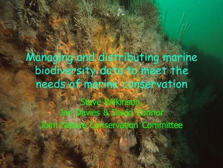 Managing and distributing marine biodiversity data to meet the needs of marine conservation Steve Wilkinson, Jon Davies & David Connor Joint Nature Conservation.