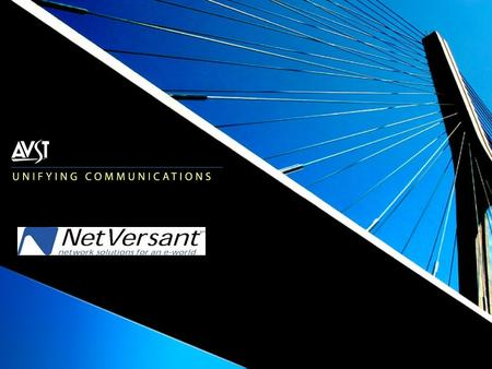 NetVersant Service Offering  Messaging Division  All employees with 15+ years in voicemail  Ex-Octel applications specialist, technicians, trainers,